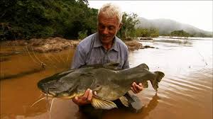 My catfish wasn't as big as this but the water looked as murky!