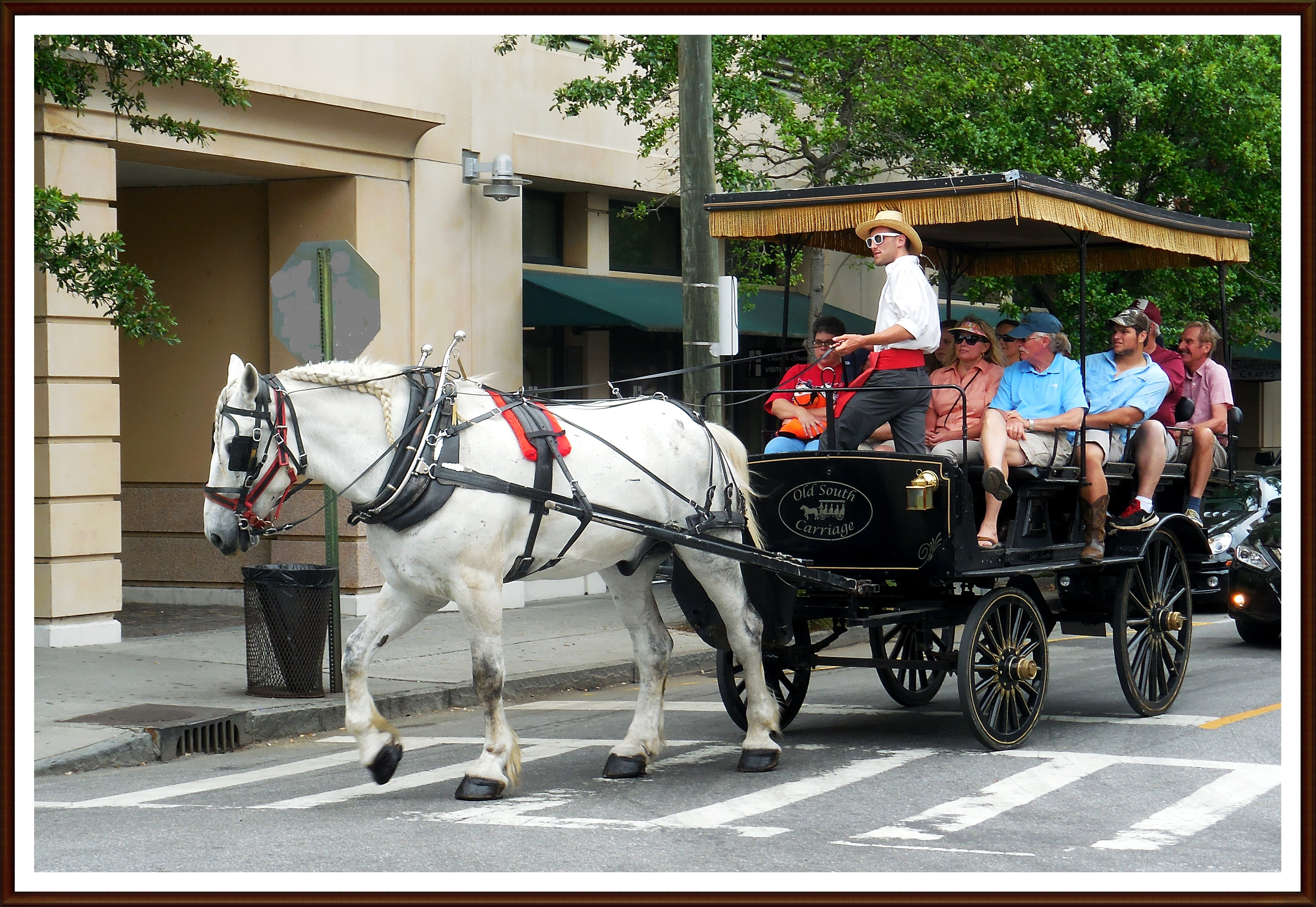 Horse and Carriage in the French Quarter