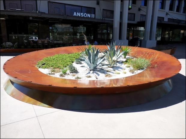 anson-ii-flowers