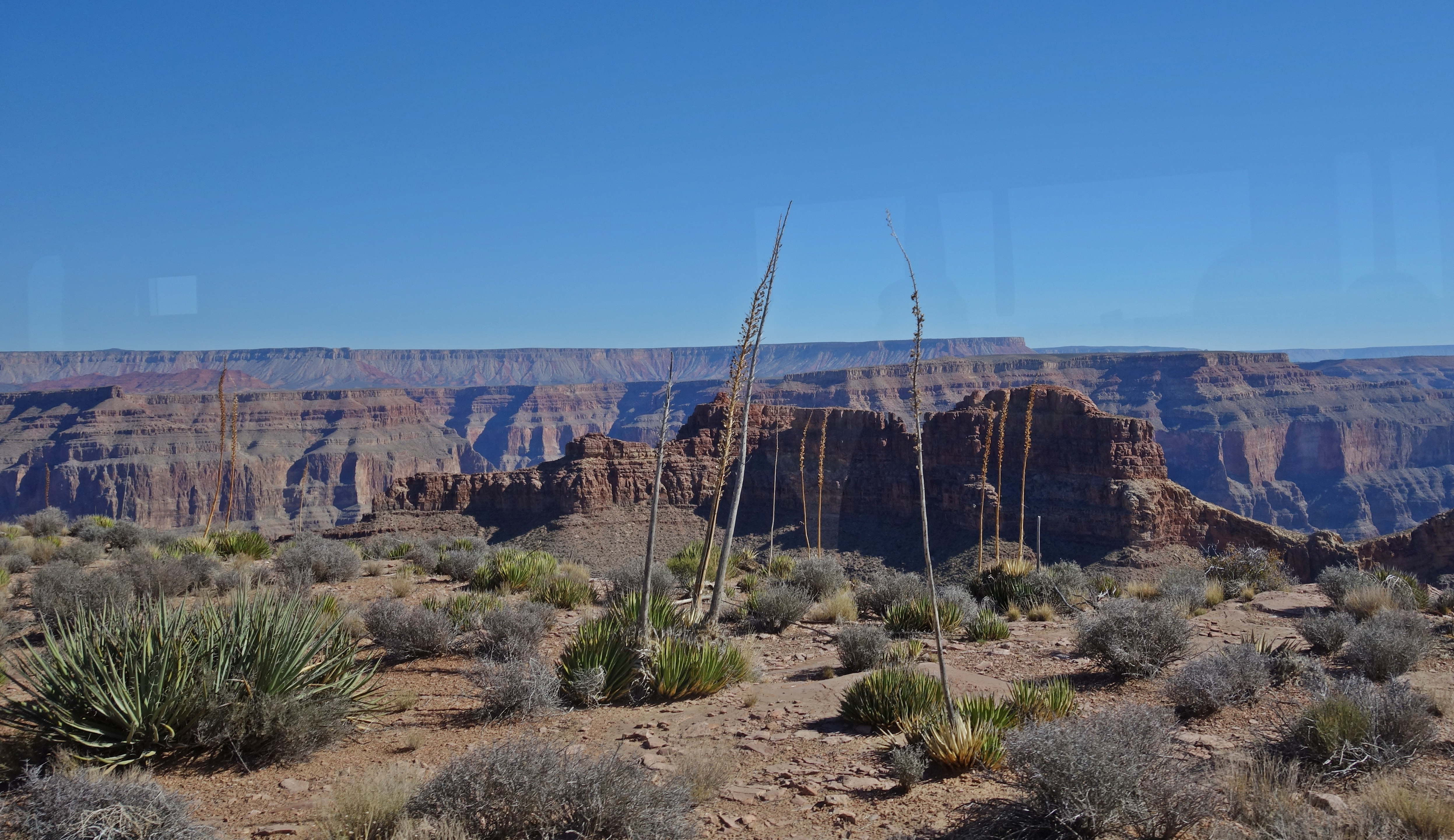 first glimpse of grand canyon